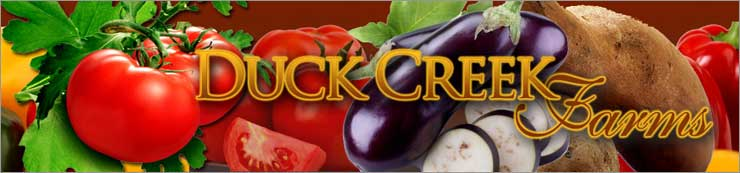 Welcome to Duck Creek Farms - growing quality tomato and bedding plants for over 30 years.  We only ship sweet potato plants at this time. Please see our Sweet Potato list for shipping details. Our Tomato/Herb plants are available for local sales only, and can be found at the below listed plant festivals.