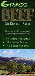 grass fed cattle beef new york farm