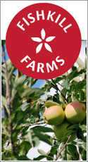 an apple orchard and diversified fruit and vegetable farm in the town of East Fishkill, New York. In addition to 40 acres of apples, we grow peaches, nectarines, black currants, cherries, and pumpkins, all of which are available in season for pick-your-own