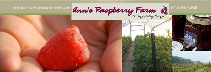 Ann's Raspberry Farm & Specialty Crops is, proudly, a Certified Naturally Grown farm. We specialize in growing Chemical-Free Red Raspberries and Brussels Sprouts. Seasonally, we offer educational farm tours and u-pick opportunities.